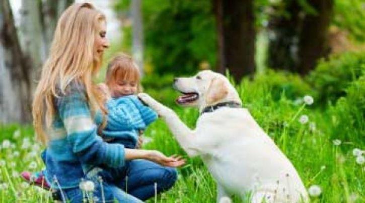Η συνεισφορά των ζώων στην ψυχική υγεία του ανθρώπου