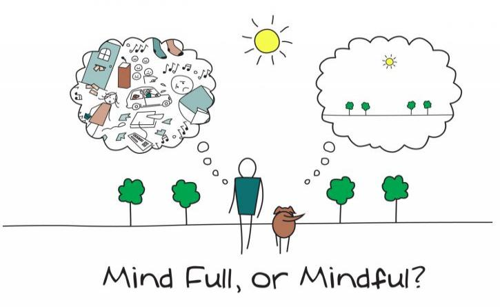 A major research project about mindfulness & pupils' mental health and school performance
